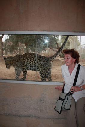 me and a leopard sml