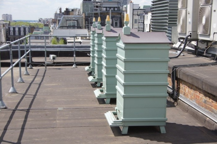 beehives-fortnums