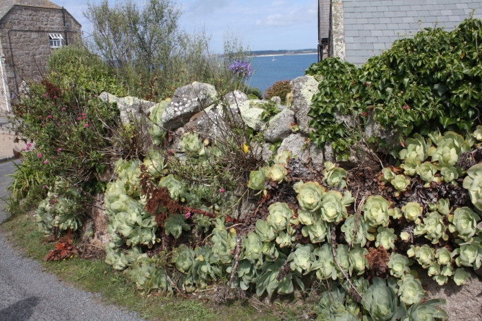 gtext dry stone walls 2.jpg